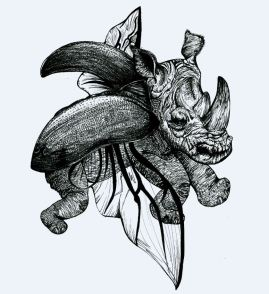 Rhino Beetle JPG